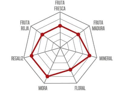 Tempranillo de Rioja Alavesa